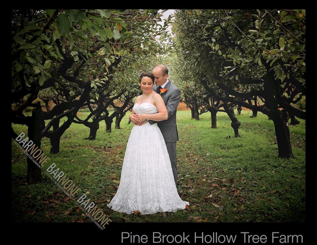 Lauren and David's Wedding at Pine Brook Hollow