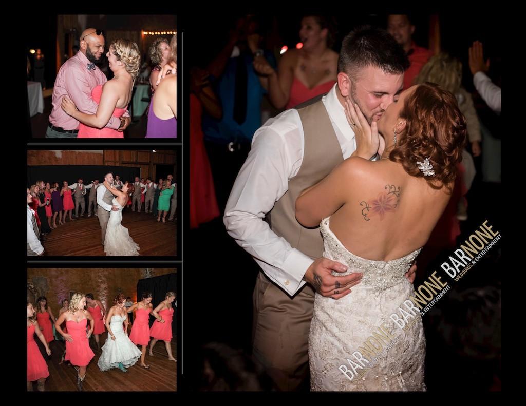 Bar None Photography - Longswamp B&B Wedding 1260