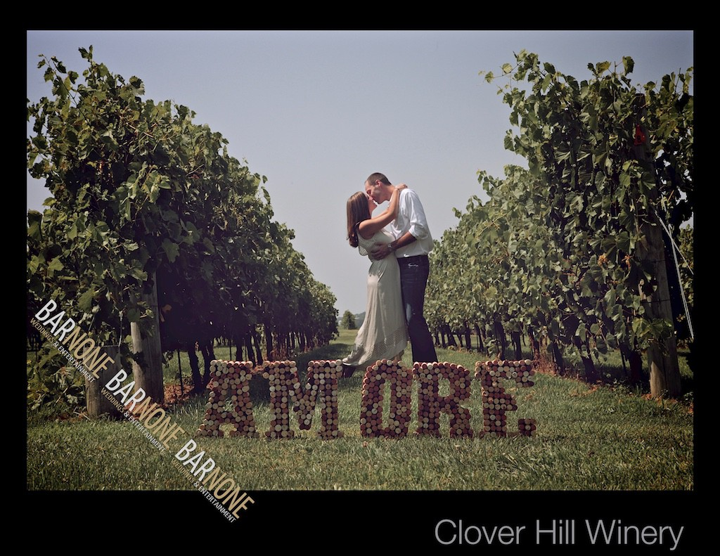 Clover Hill Engagement Photography - Bar None Photography 1666
